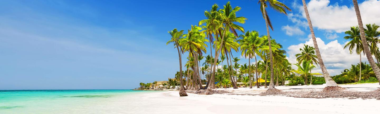 All Caribbean